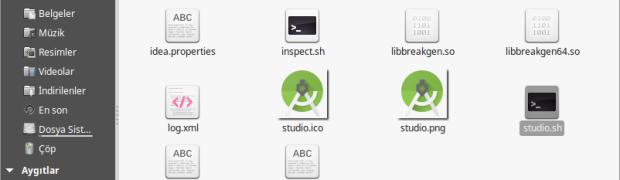 Linux Mint üzerine Android Studio Kurulumu