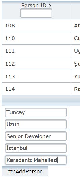Kayıt ekleme formu